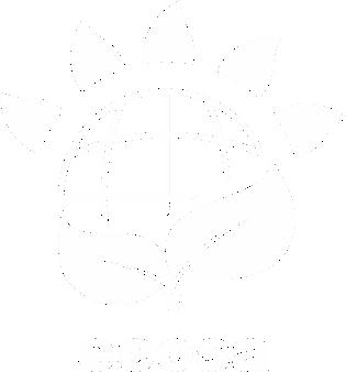 ecosa-white.png